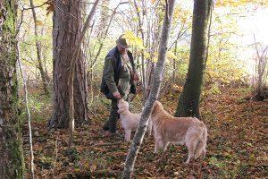 Eric Collinet et ses chiens